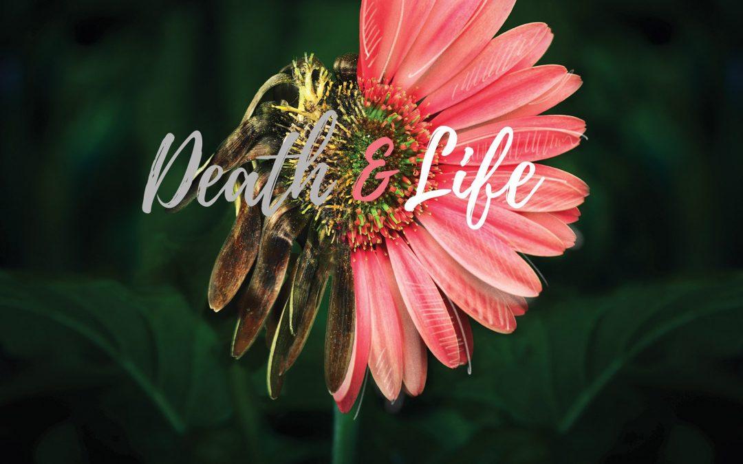 Death & Life